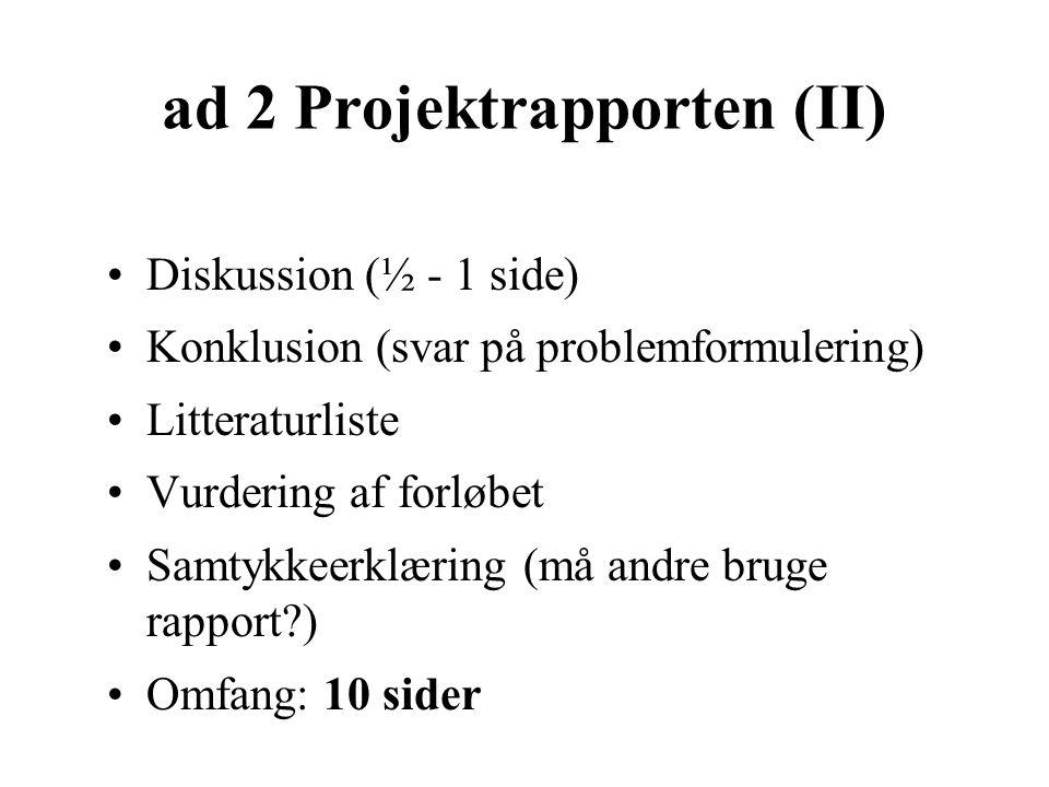 ad 2 Projektrapporten (II)