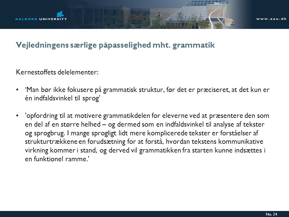 Vejledningens særlige påpasselighed mht. grammatik