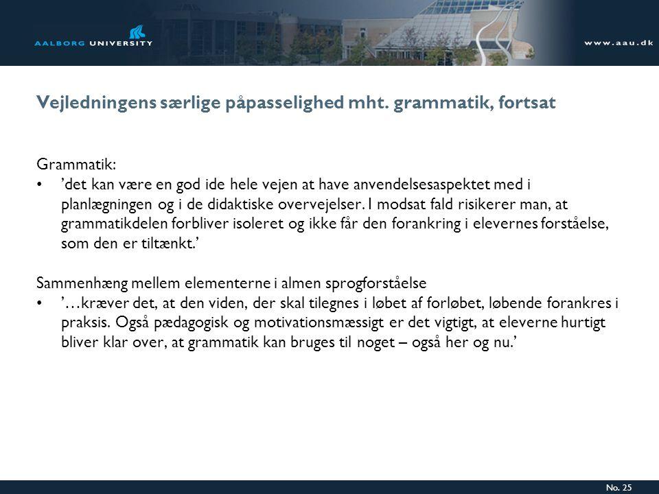 Vejledningens særlige påpasselighed mht. grammatik, fortsat