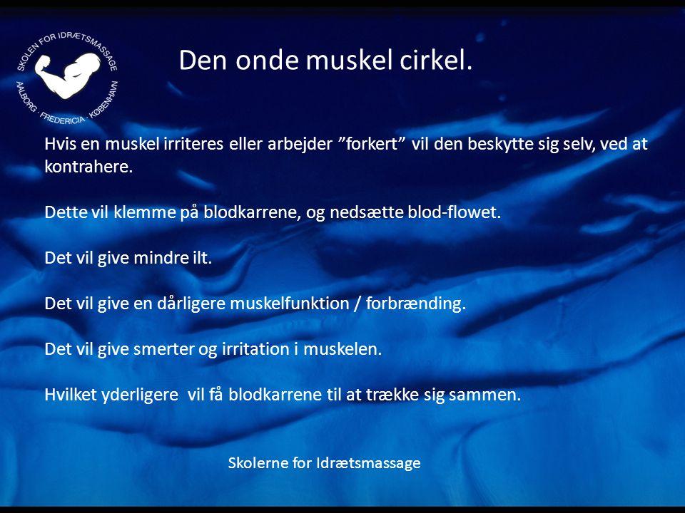 Den onde muskel cirkel. Hvis en muskel irriteres eller arbejder forkert vil den beskytte sig selv, ved at kontrahere.