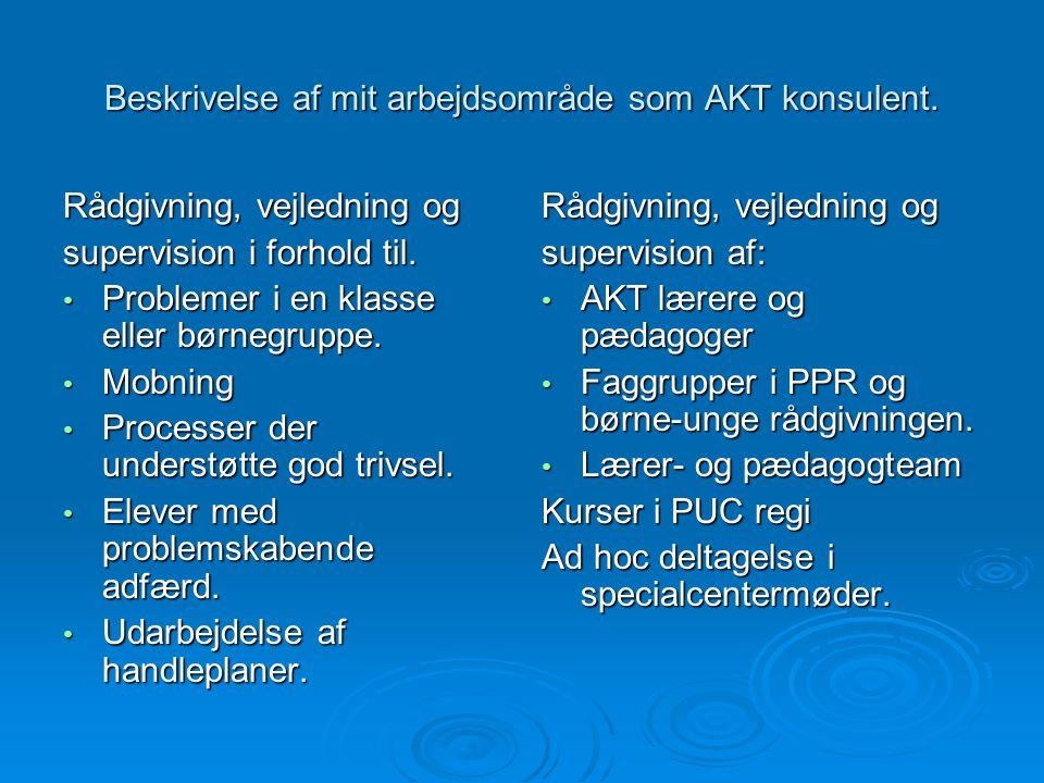 Beskrivelse af mit arbejdsområde som AKT konsulent.