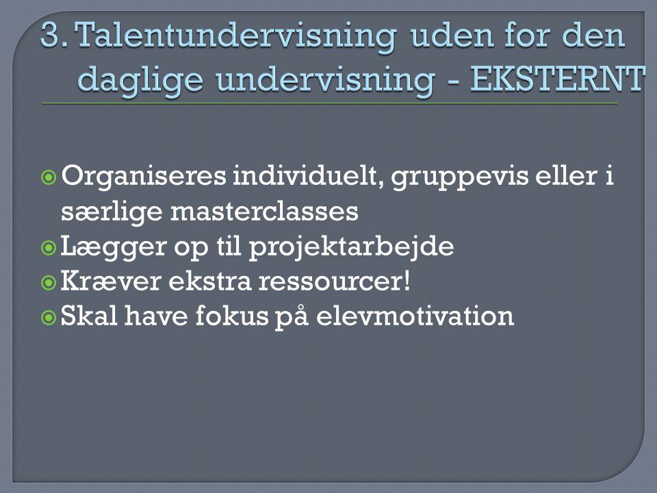 3. Talentundervisning uden for den daglige undervisning - EKSTERNT