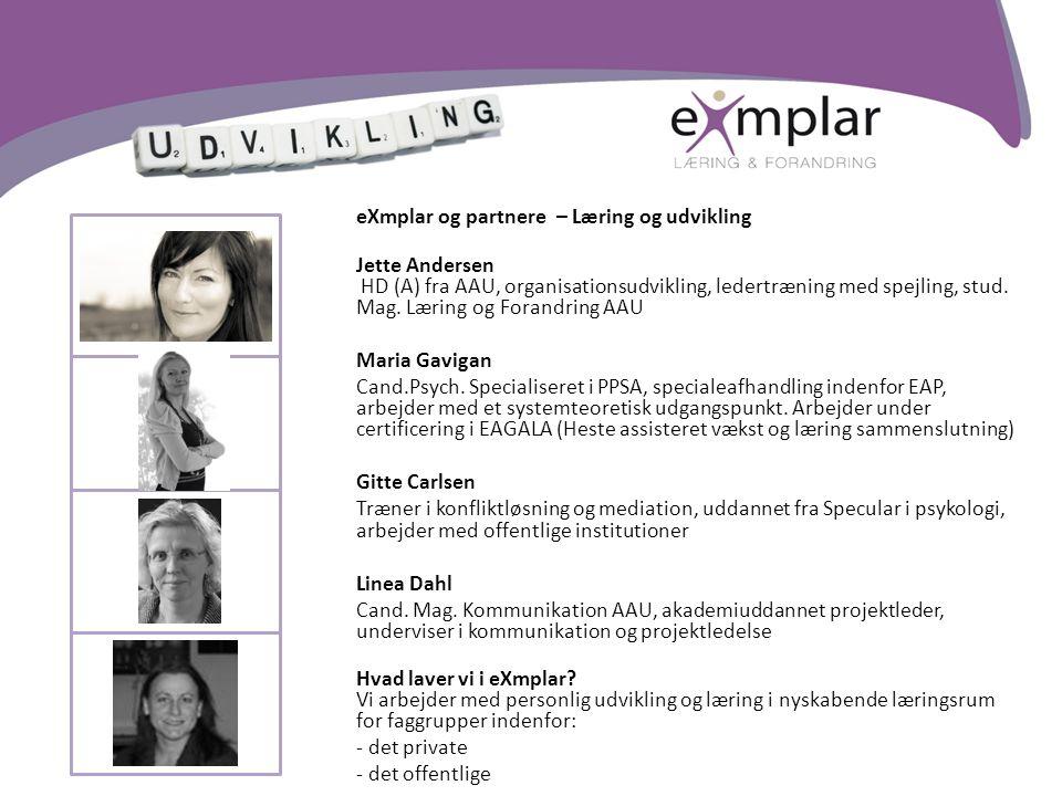 eXmplar og partnere – Læring og udvikling