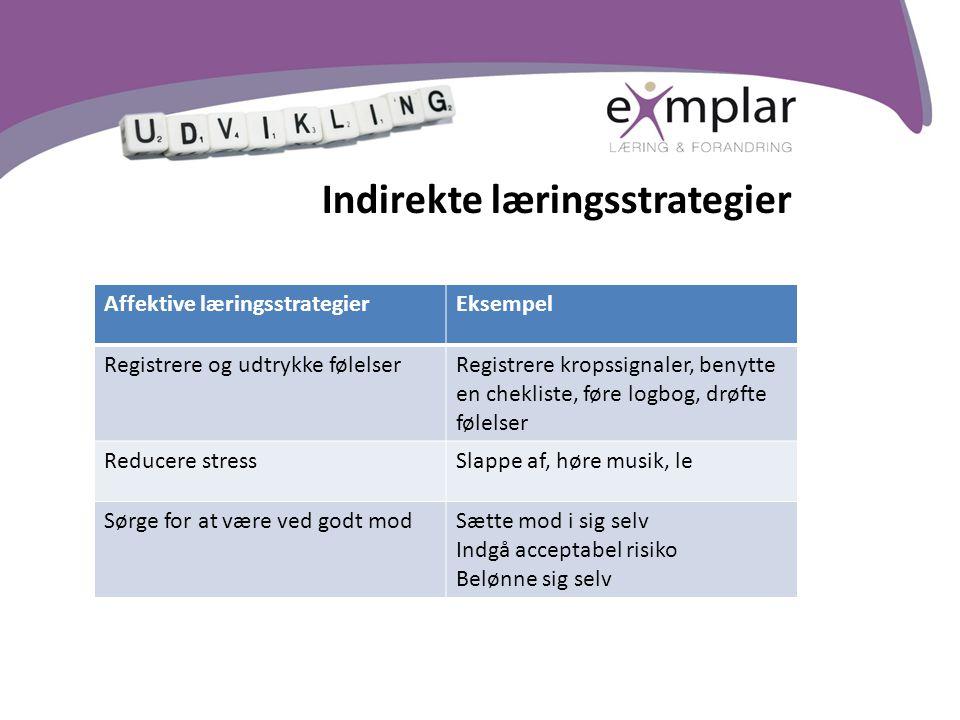 Indirekte læringsstrategier