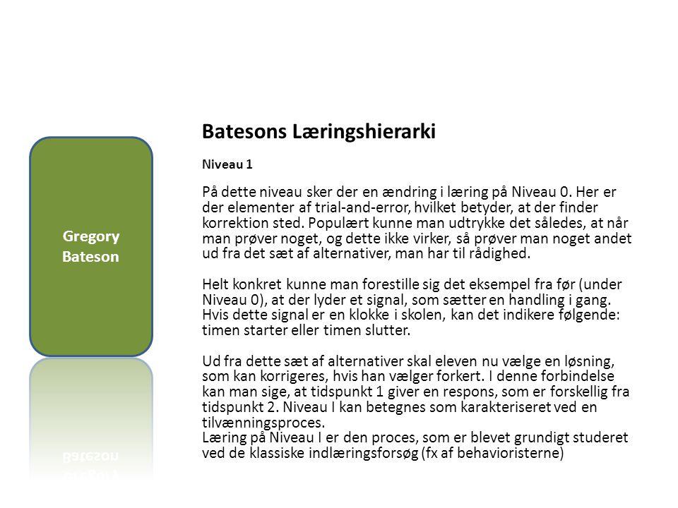 Batesons Læringshierarki