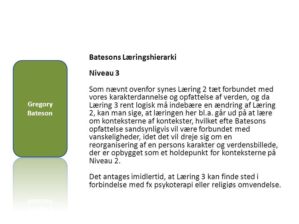Batesons Læringshierarki Niveau 3