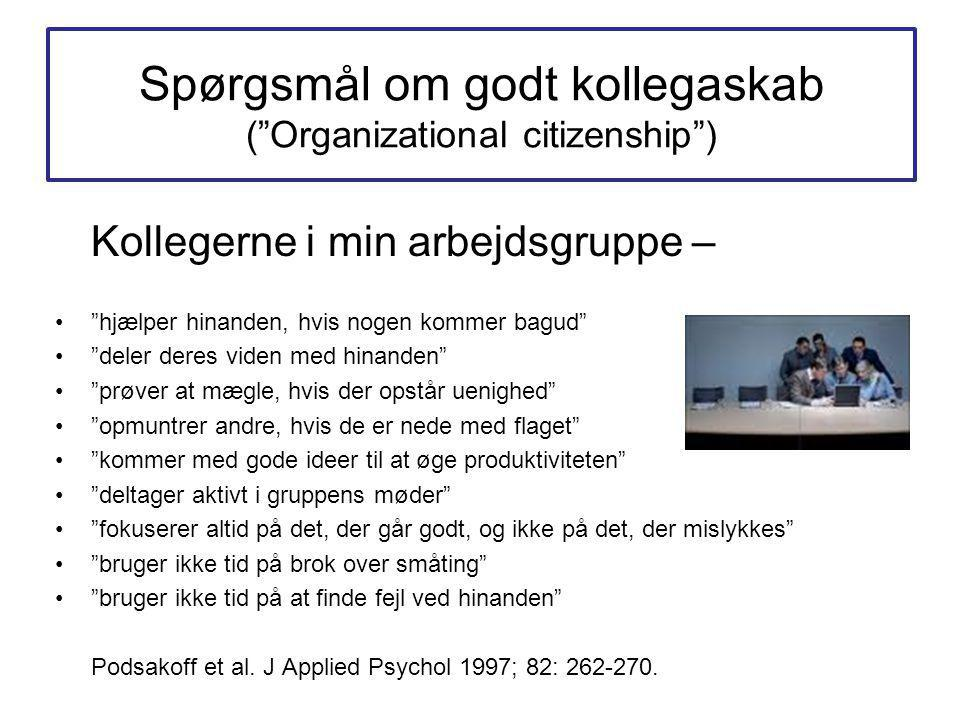 Spørgsmål om godt kollegaskab ( Organizational citizenship )