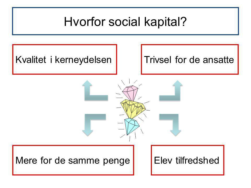 Hvorfor social kapital