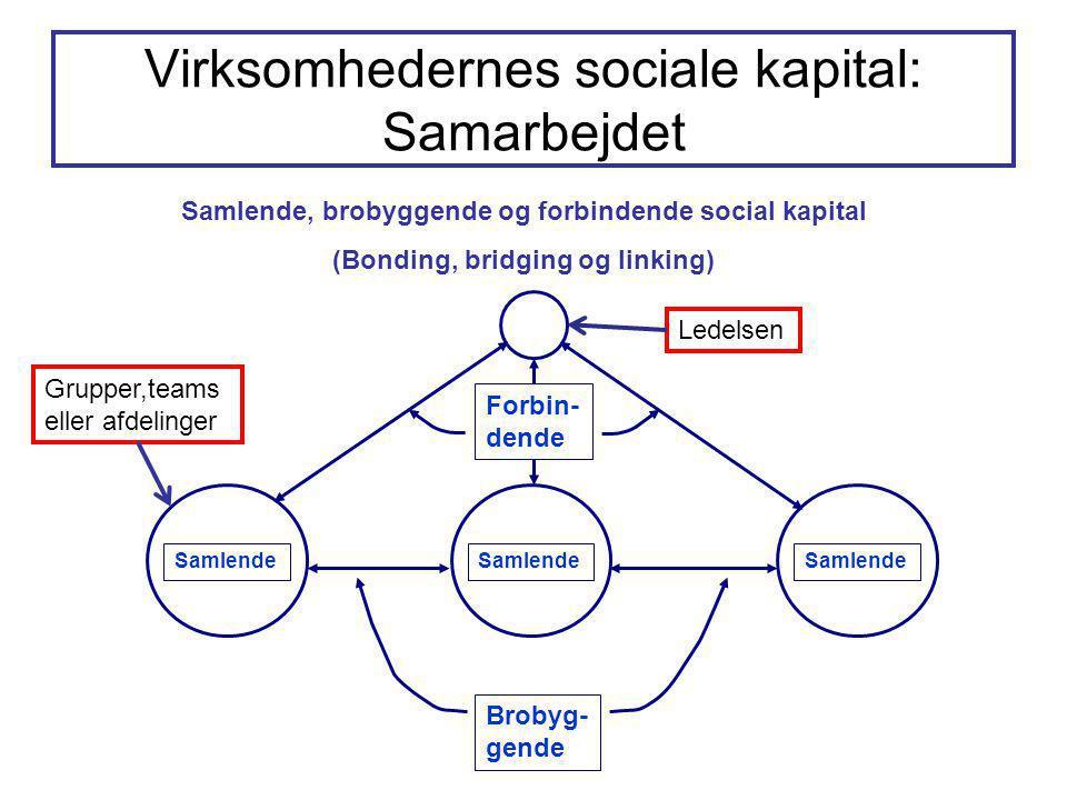Virksomhedernes sociale kapital: Samarbejdet