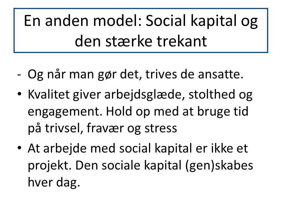 En anden model: Social kapital og den stærke trekant