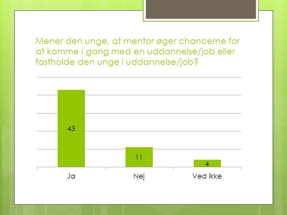 Mener den unge, at mentor øger chancerne for at komme i gang med en uddannelse/job eller fastholde den unge i uddannelse/job