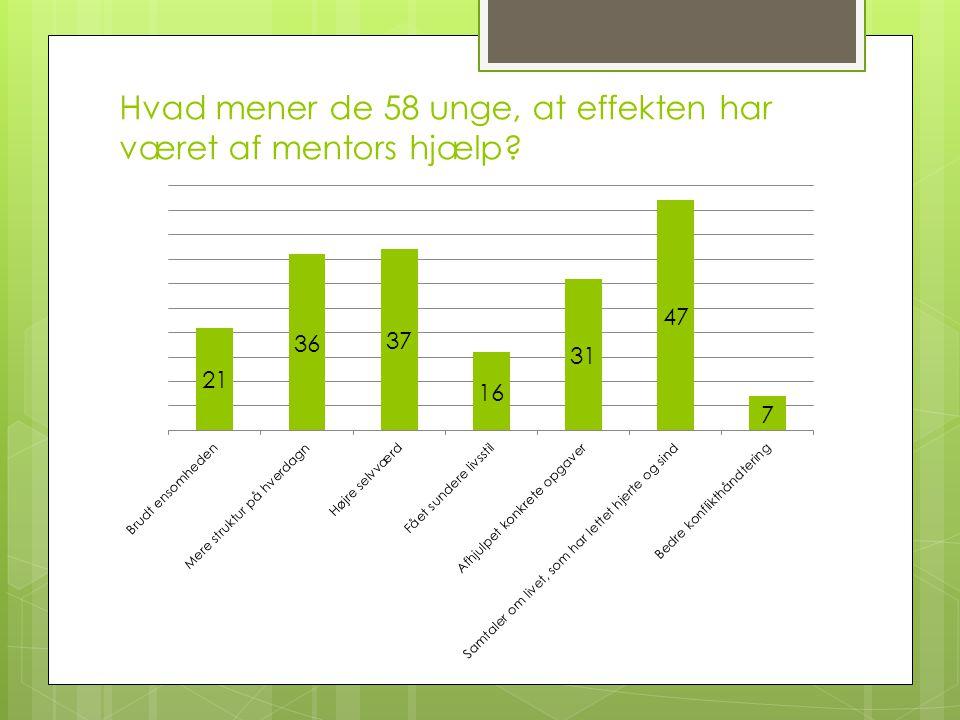 Hvad mener de 58 unge, at effekten har været af mentors hjælp