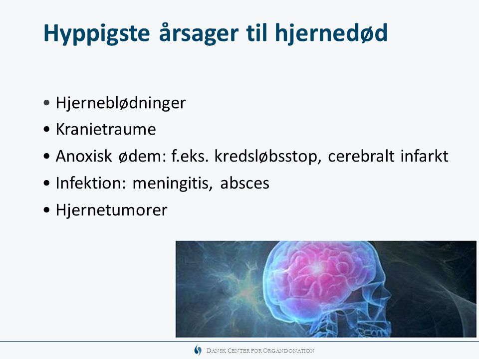 Hyppigste årsager til hjernedød