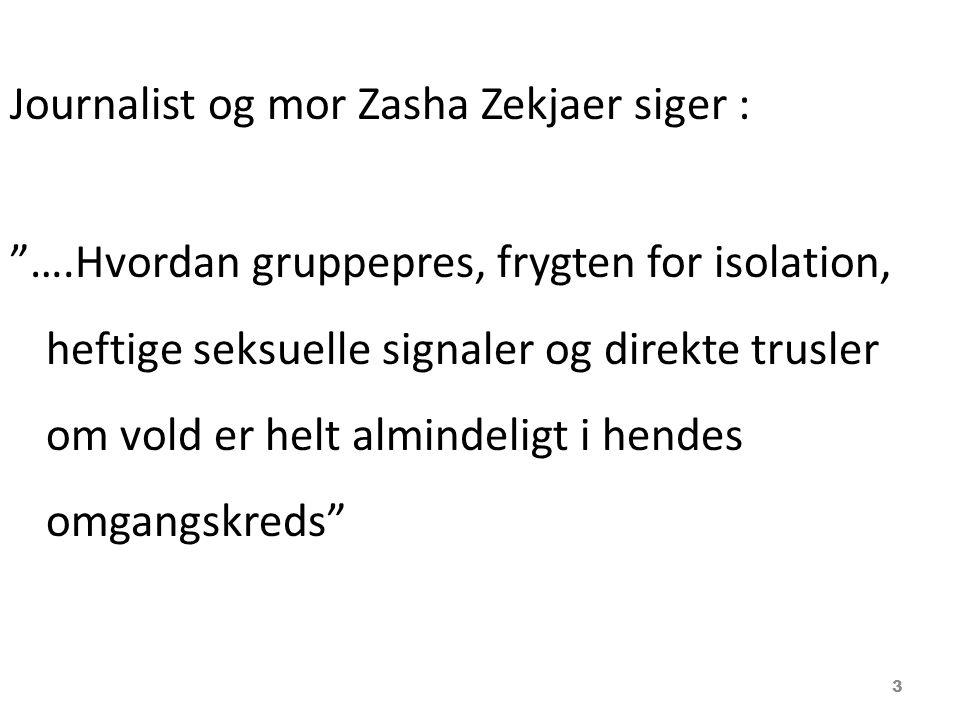 Journalist og mor Zasha Zekjaer siger : …