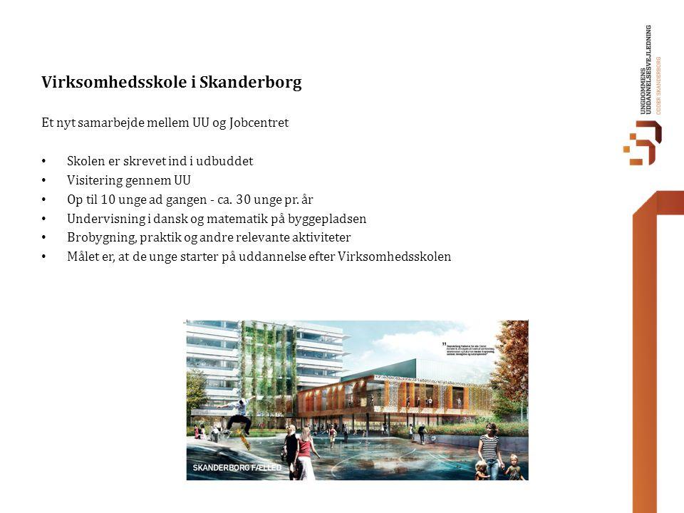 Virksomhedsskole i Skanderborg
