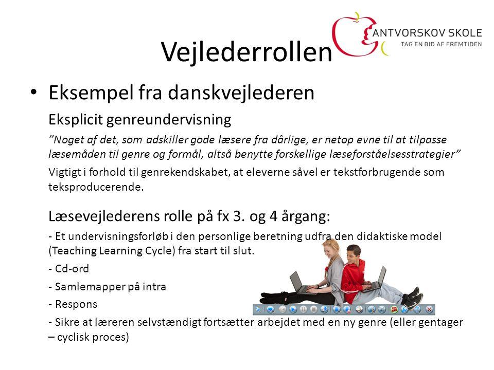 Vejlederrollen Eksempel fra danskvejlederen