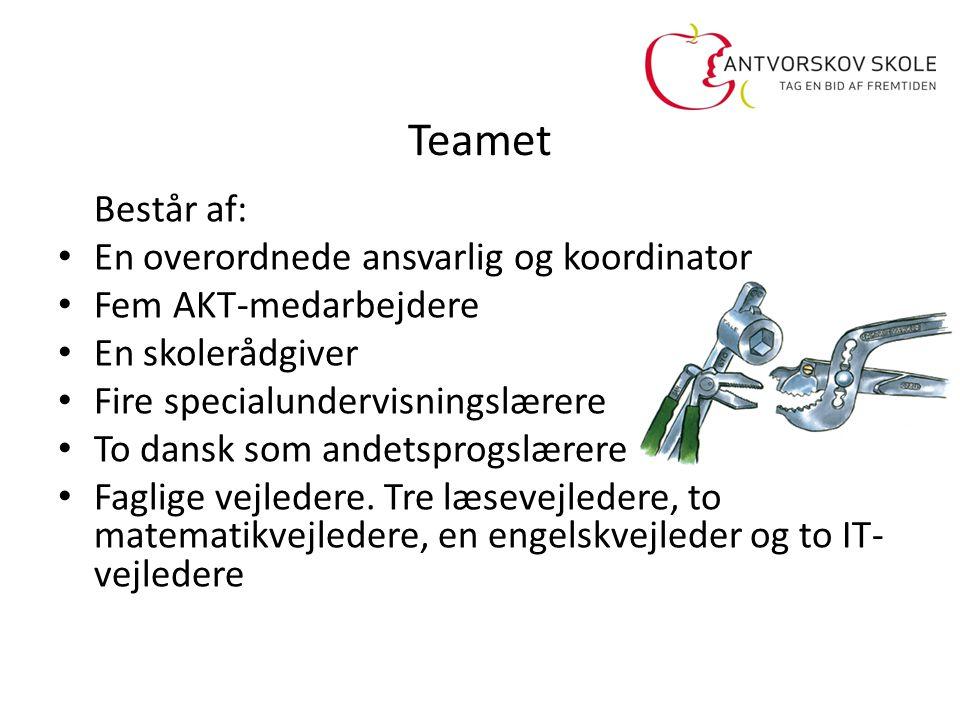 Teamet Består af: En overordnede ansvarlig og koordinator
