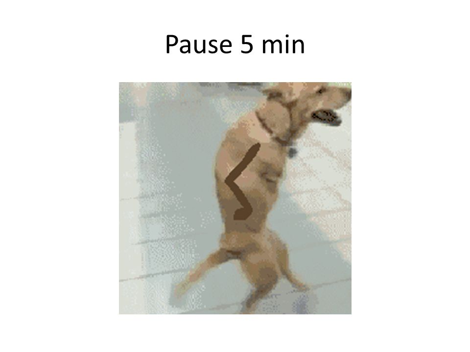 Pause 5 min