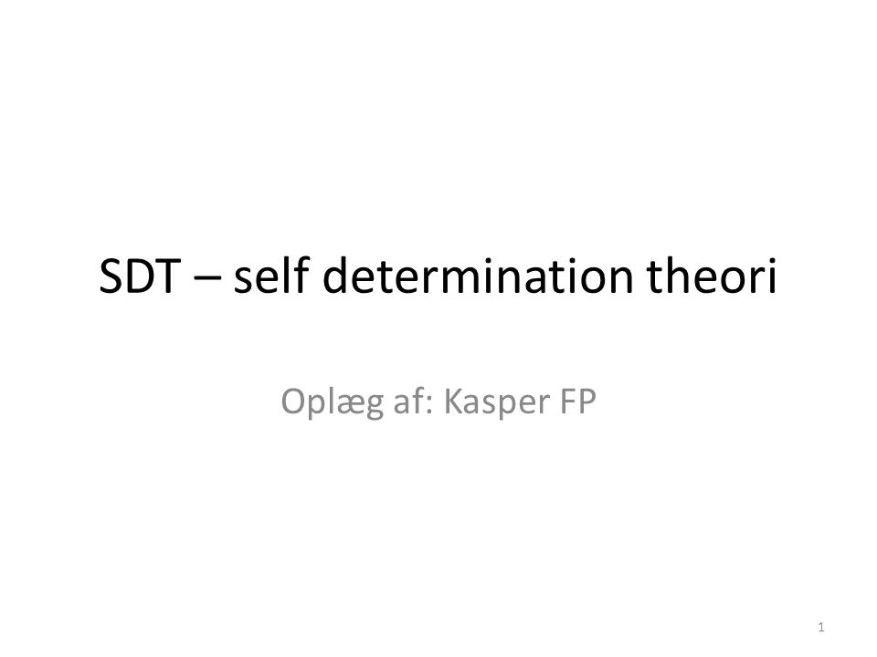 SDT – self determination theori