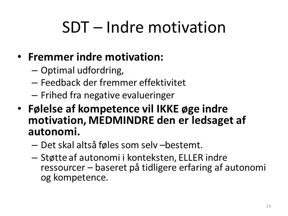 SDT – Indre motivation Fremmer indre motivation: