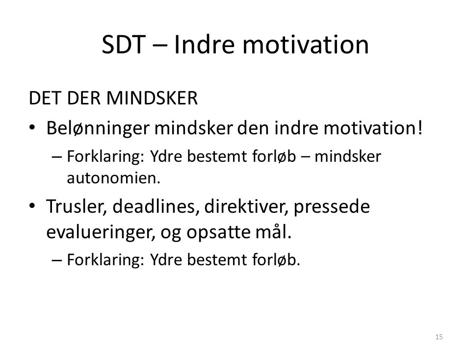 SDT – Indre motivation DET DER MINDSKER