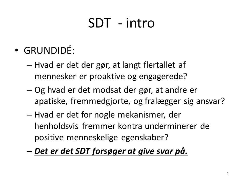 SDT - intro GRUNDIDÉ: Hvad er det der gør, at langt flertallet af mennesker er proaktive og engagerede