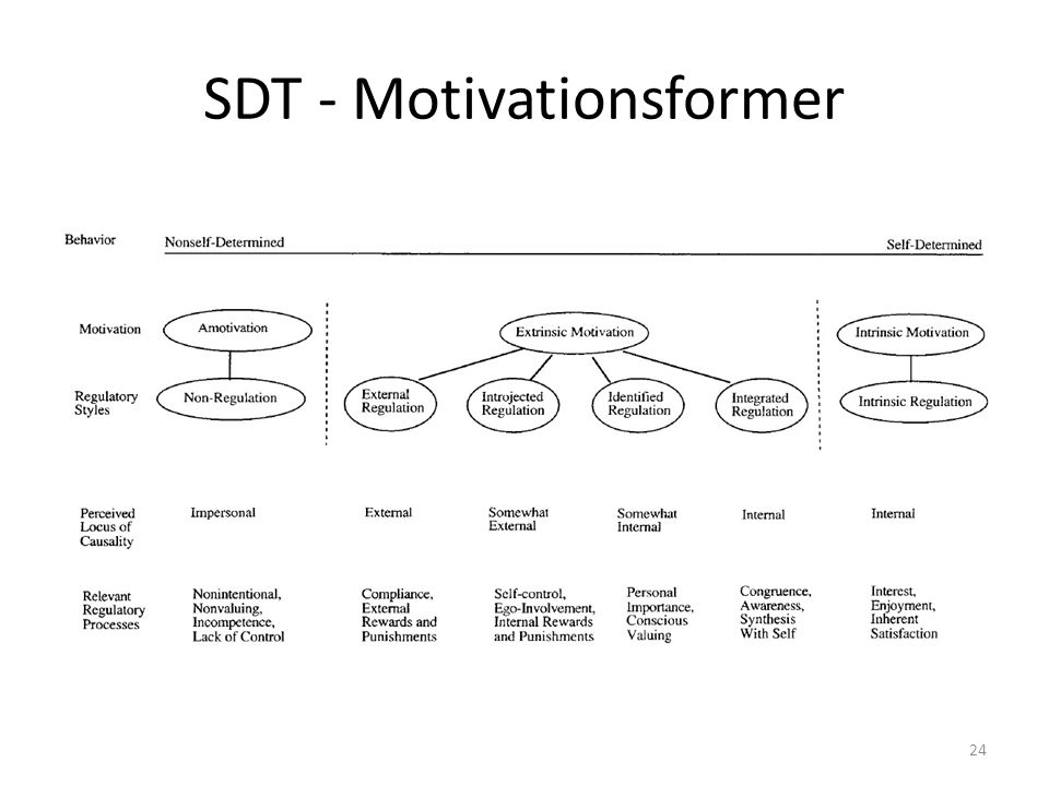 SDT - Motivationsformer