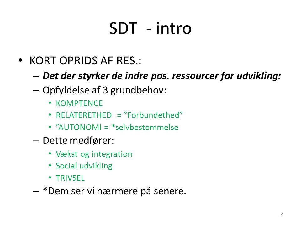 SDT - intro KORT OPRIDS AF RES.: