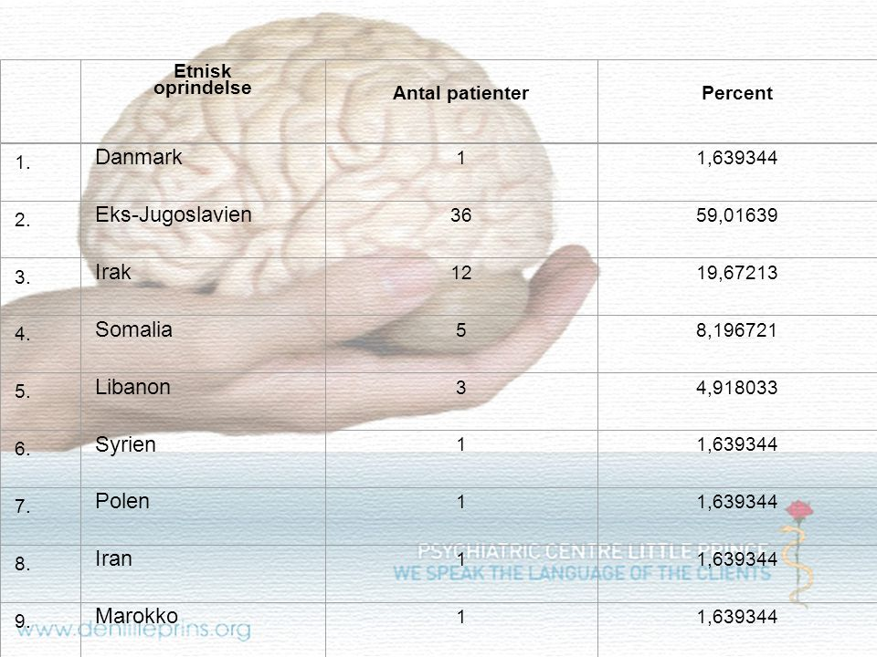 Total 61 100 Danmark Eks-Jugoslavien Irak Somalia Libanon Syrien Polen