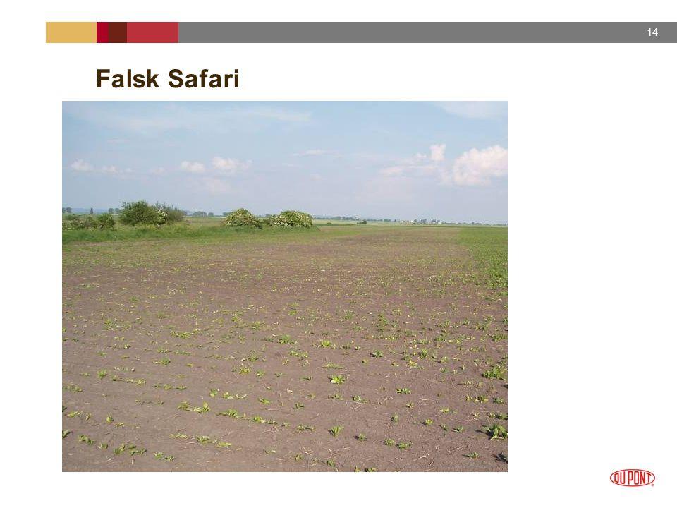 Falsk Safari