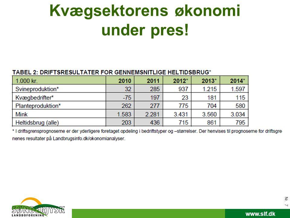 Kvægsektorens økonomi under pres!