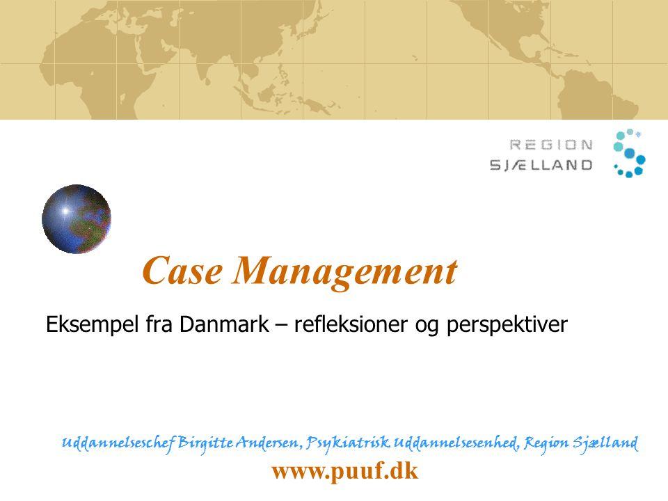 Eksempel fra Danmark – refleksioner og perspektiver