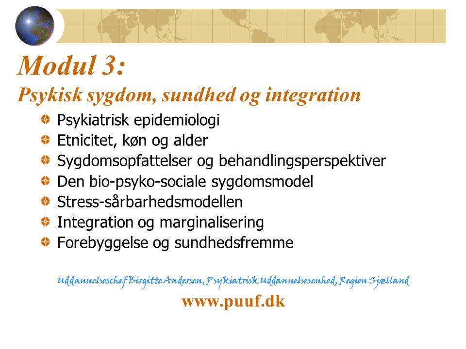 Modul 3: Psykisk sygdom, sundhed og integration
