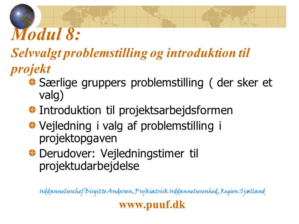 Modul 8: Selvvalgt problemstilling og introduktion til projekt