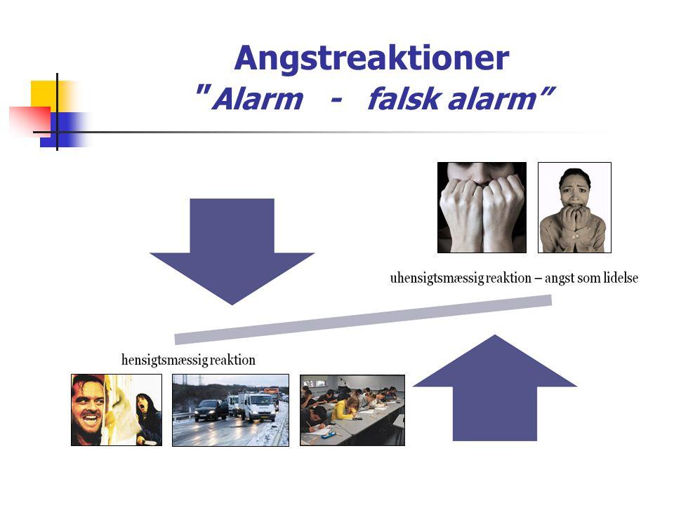 Angstreaktioner Alarm - falsk alarm