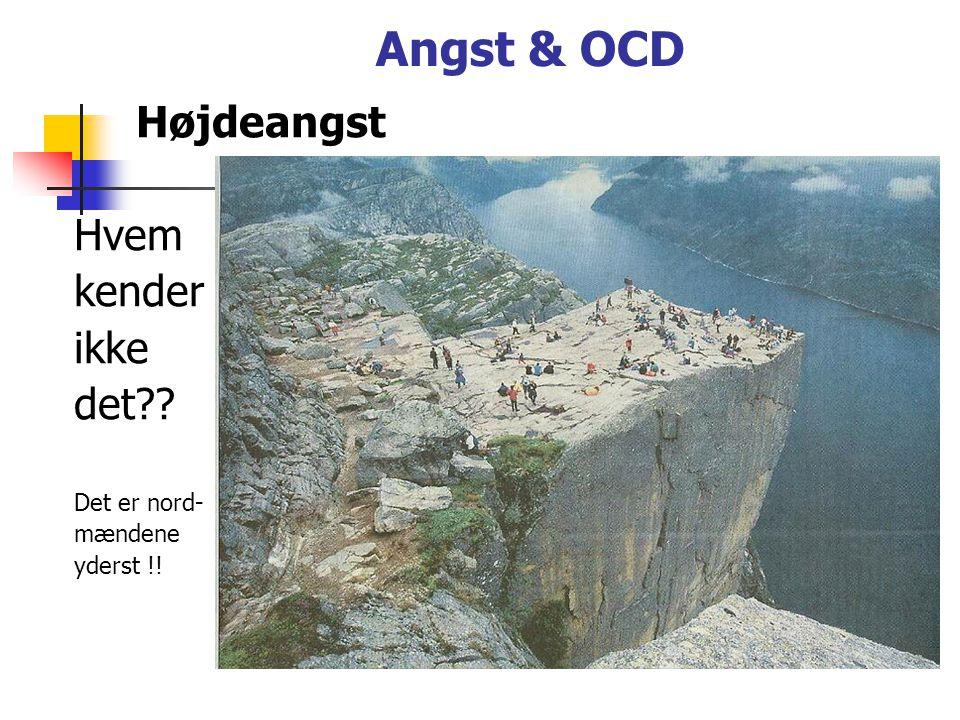 Angst & OCD Højdeangst Hvem kender ikke det Det er nord- mændene