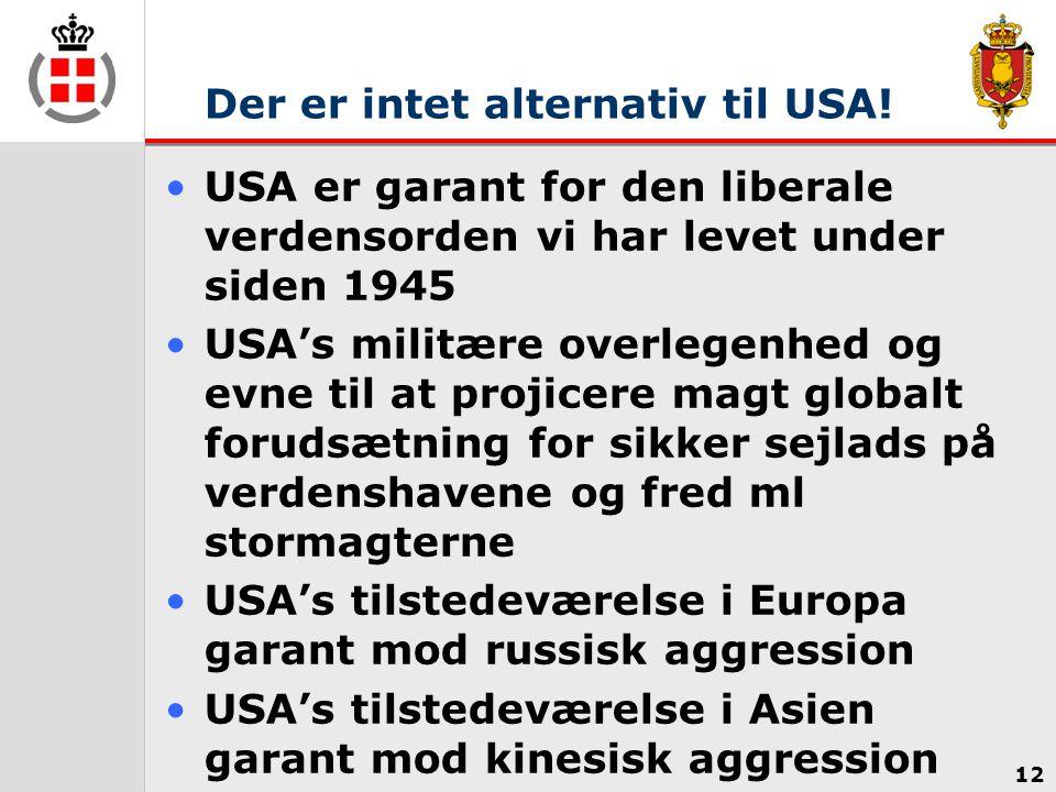 Der er intet alternativ til USA!