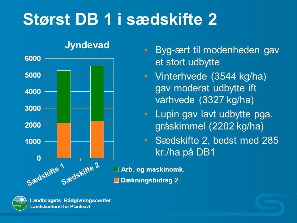 Størst DB 1 i sædskifte 2 Jyndevad