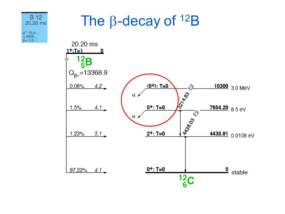 The b-decay of 12B EXPECT TO SEE