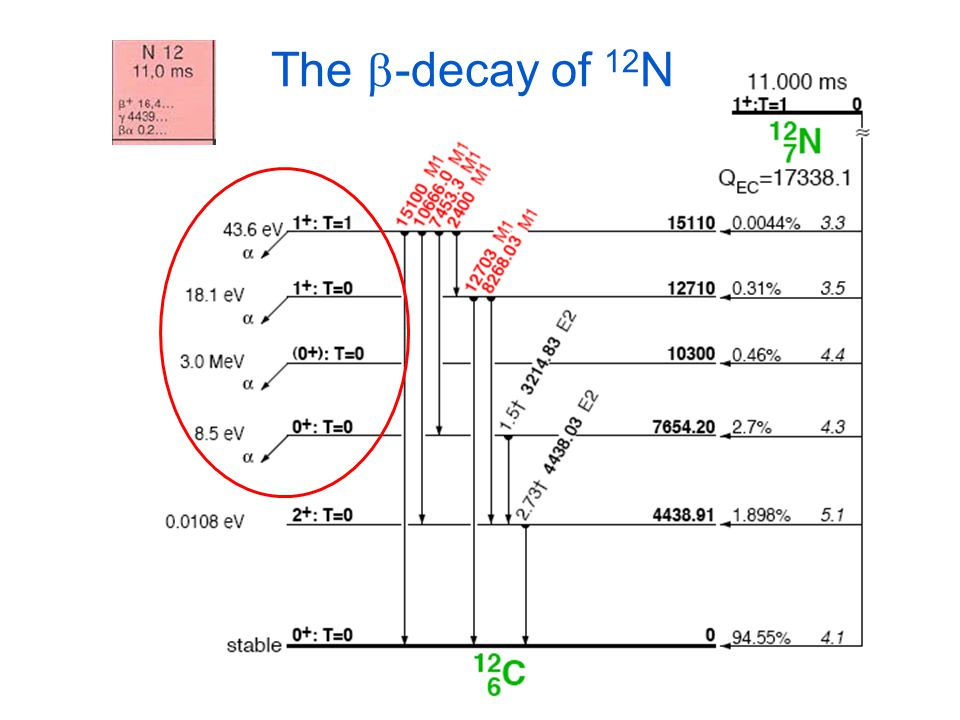 The b-decay of 12N EXPECT TO SEE
