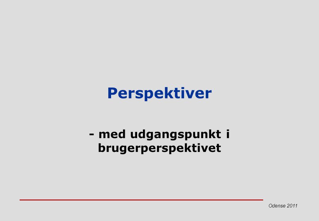 - med udgangspunkt i brugerperspektivet