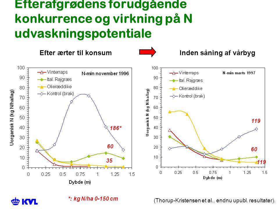 Efterafgrødens forudgående konkurrence og virkning på N udvaskningspotentiale