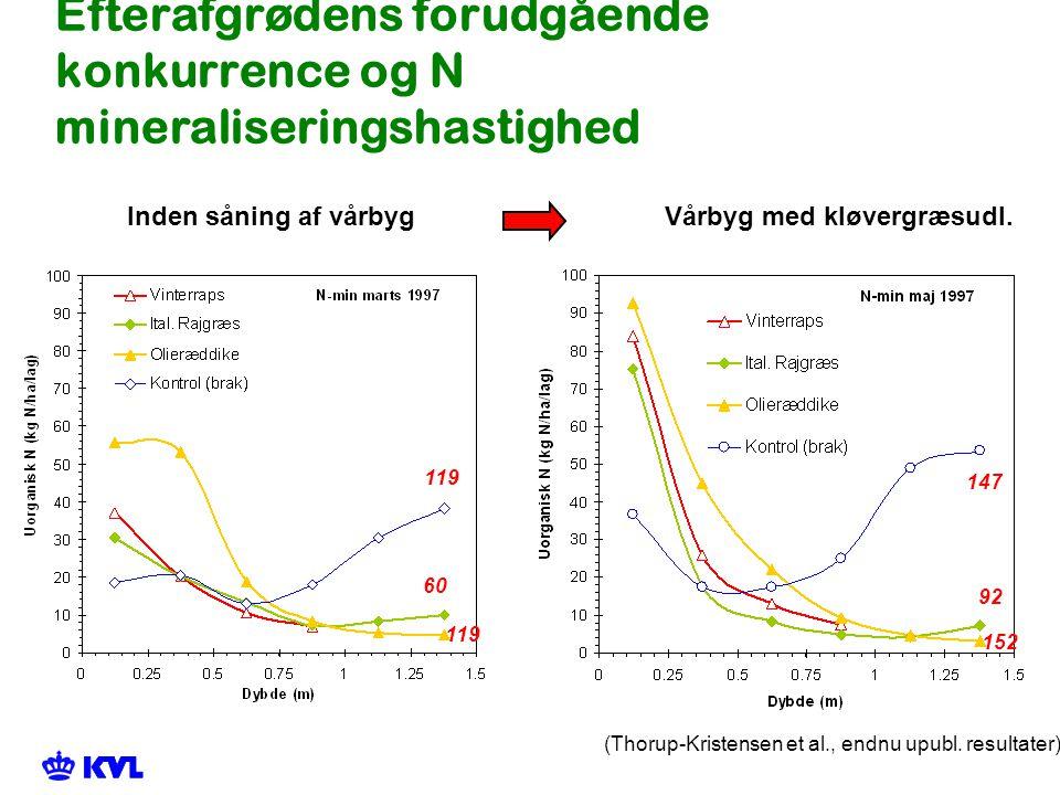 Efterafgrødens forudgående konkurrence og N mineraliseringshastighed