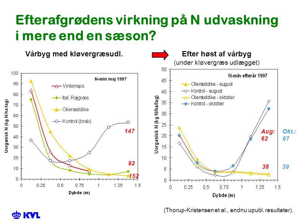 Efterafgrødens virkning på N udvaskning i mere end en sæson