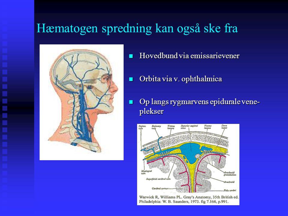 Hæmatogen spredning kan også ske fra