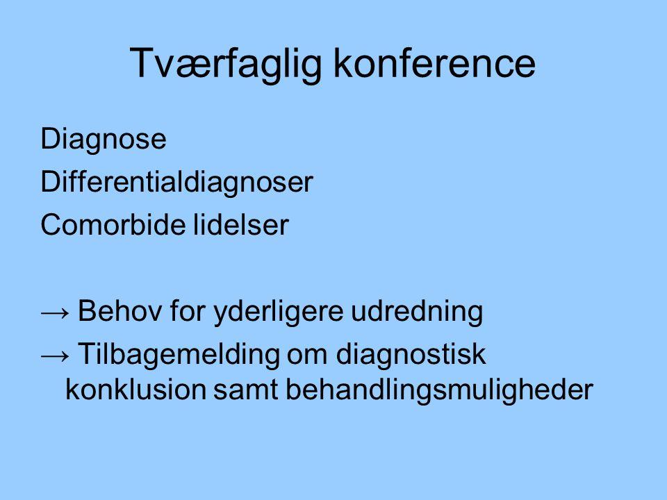 Tværfaglig konference
