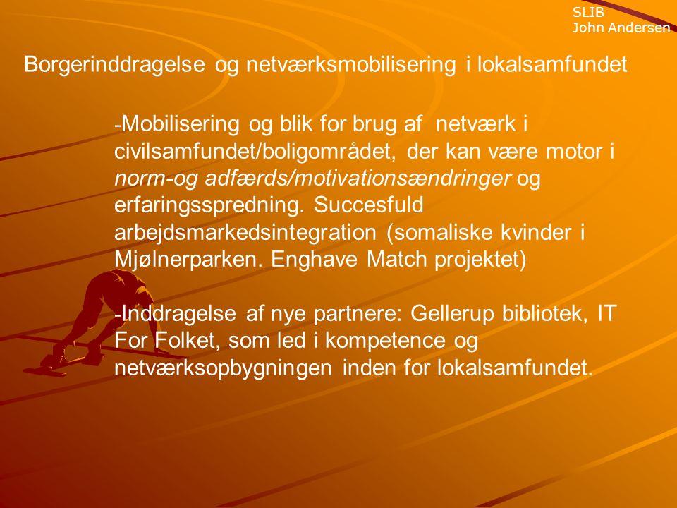 Borgerinddragelse og netværksmobilisering i lokalsamfundet