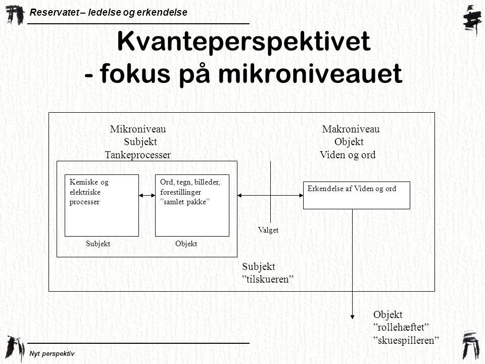 Kvanteperspektivet - fokus på mikroniveauet