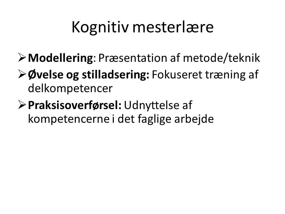 Kognitiv mesterlære Modellering: Præsentation af metode/teknik
