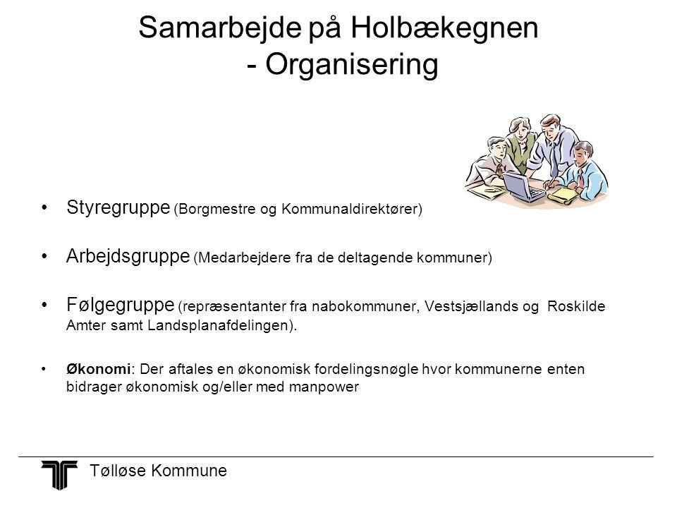 Samarbejde på Holbækegnen - Organisering